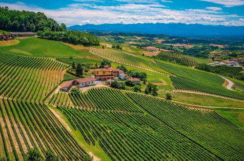 Cascina Sòt - Vini e Degustazione - Monforte d'Alba